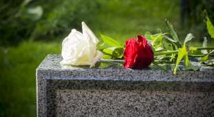 White And Red Rose On A Tombstone (Vit och röd ros på